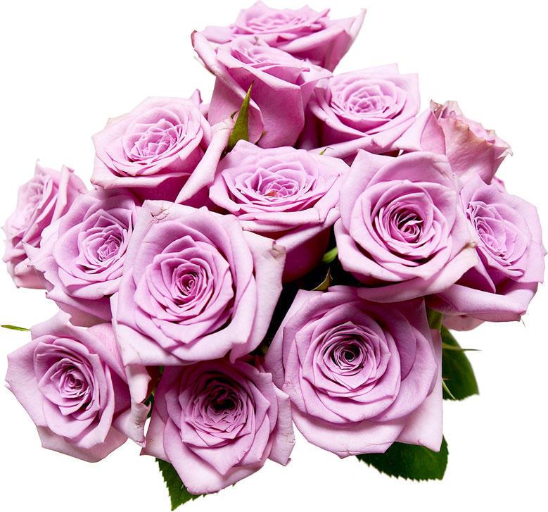 flower2141.jpg